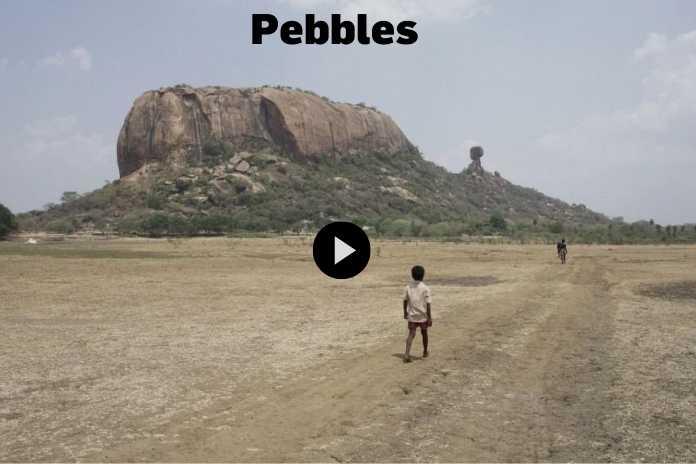 Tamil Film Pebbles by Vinothraj Wins Tiger Award at Rotterdam, Pickle Media