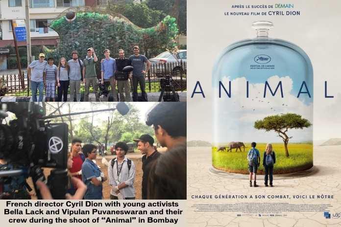 Shoot of Film Animal